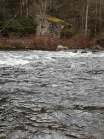 obed river
